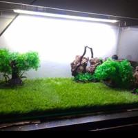 Rumput Sintetis Premium Untuk Dekorasi Aquarium Dan Aquascape Terlaris