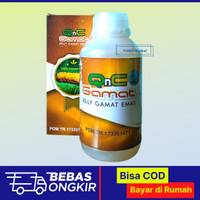 QnC Jelly Gamat Emas - Q N C Jeli Jely Jelli Gamat Gamet Original