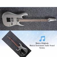 Ibanez Electric Guitar Axion Label RGD61ALET Metallic Grey Matte
