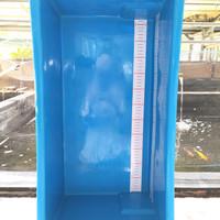 Bak Ukur Ikan Koi 55cm