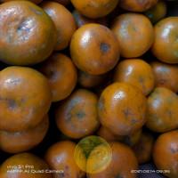 jeruk medan | jeruk manis brastagri 1 kg