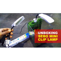 Lampu Soliter MINI Cupang LED jepit Aquarium Kaca Akrilik Paxton Putih