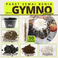 Paket Semai Kaktus Gymno Variegata Mix - 30 Biji + Semai