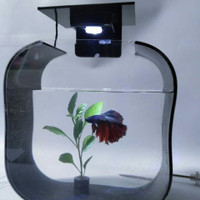 aquarium cupang soliter akrilik lampu yamano