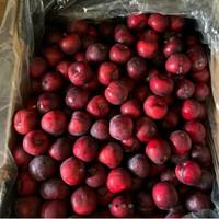 buah plum australia segar