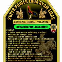 Super Power Laga Ayam Emas