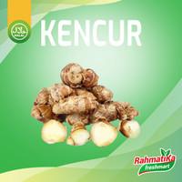 Kencur Segar / Kencur Fresh 250 gram
