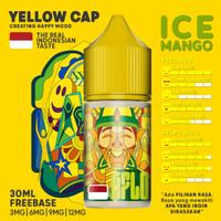 Aflo Ice Mango 30ML by MOVI 100% Authentic - Liquid Aflo Ice Mango
