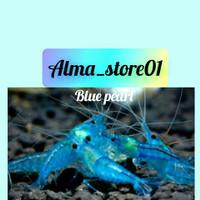 hiasan aquarium blue pearl aquascape aquarium