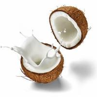 santan kelapa per 1 buah kelapa