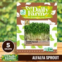 Daily Farm - Benih Alfalfa Sprout - Microgreens Seed - Import