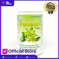 PACEGO Borobudur Herbal, Ekstrak Mengkudu, Buah Pace, Jamu Hipertensi
