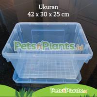 Bak Plastik Hidroponik Wick Kontainer Bening Transparan Import 30 L