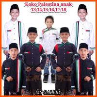 baju koko anak palestina/koko anak remaja/koko gus azmi terbaru