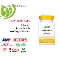 Natures Way Choline 500 mg (100 Tab) Suplement Memori Alzheimer ORI US