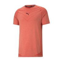 Kaos PUMA evoKNIT Tech Short Sleeve Men's Training Tee 520111-23 PSKL