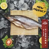 Ikan Patin Segar / Patin Dori Beku / Ikan Patin 1 ekor / pack - 1 Pack 501-600g
