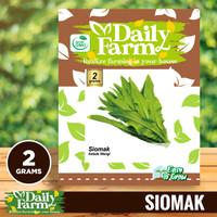 Daily Farm - Benih Bibit Siomak Aroma - Bibit Selada Wangi