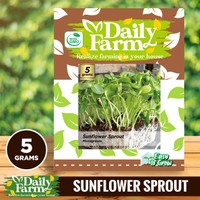Daily Farm - Benih Sunflower Sprout - Microgreens Seed - Import