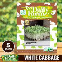 Daily Farm - Benih White Cabbage Sprout Green - Bibit Microgreens