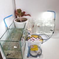 WARNA BIRU - 1 Set Lampu LED Aquarium Mini/Soliter Ikan Cupang dll