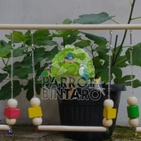 Ayunan Burung / Mainan Parrot /Ayunan Rantai dan kayu