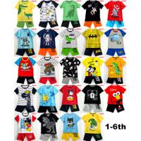Baju Setelan Pendek Anak Laki Karakter (1-6th)