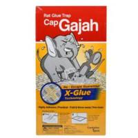 Lem Perangkap Tikus SIAP PAKAI Cap Gajah Papan / Trap