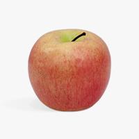 KANA Apple Fuji - Buah Imitasi