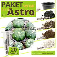 Paket Menanam Benih Biji Kaktus Astro Mix