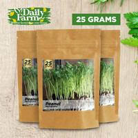 Benih Sayur Microgreens Peanut Microgreen ( 25 Gram )