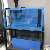 Paket aquarium 100x50x50 mushroom
