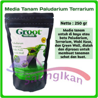 GROOT Magic Grow Media Tanam Terrarium Paludarium Wabikusa 250 Gram
