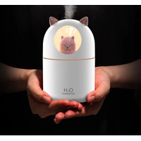 Humidifier 300ML Essential Oil Aroma Diffuser Ultrasonic Aromatherapy