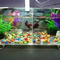 Aquarium minimalis /Aquarium cupang model B sekat ( tanpa filter)