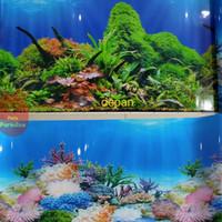 Background / Latar Belakang Aquarium Tinggi 40 cm Panjang per 10 cm
