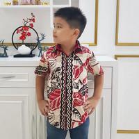 Vidi - Addis Boy Shirt / Kemeja Batik Anak Laki-Laki