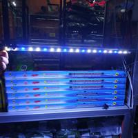 Lampu LED Celup Akuarium Aquascape Kolam Recent RCT600 60cm White Blue