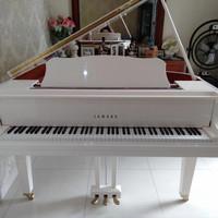 Piano Baby grand Yamaha Gb1k PWHC baru