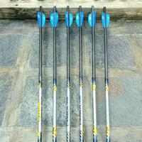 Arrow easton carbon one 730 (second)