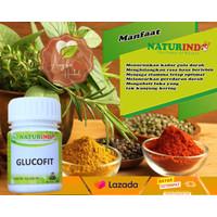 Glucofit Obat herbal diabetes diabet basah kering kencing manis gula