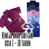 Baju Kemeja anak Laki Laki Lengan Pendek Usia 1-10 Tahun / Hem Anak Co