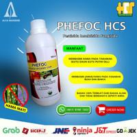 Insektisida-Pestisida Organik Anti lalat /Kutu Daun/Thrips PHEFOC HCS