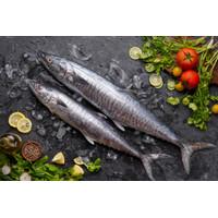 Ikan Tenggiri | FRESH
