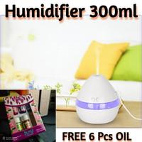300ML Humidifier Aroma Terapi Diffuser Essential Ultrasonic + Lampu