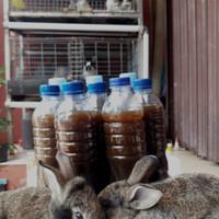 Pupuk Organik Cair POC Urine Kelinci Fermentasi