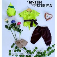Baju Peter Pan Bayi/Baju Peterpan/Newborn Photography/Newborn Prop