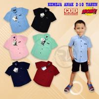 Kemeja Hem Baju Anak Bayi 2 - 9 tahun Maroon Tosca Biru Navy Hitam
