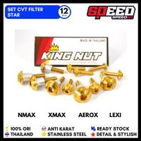 Baut CVT Filter Nmax Probolt Thailand Stainless Steel - Gold