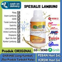 Obat Infeksi Lambung Herbal, QnC Jelly Gamat Emas Asli 100% Original